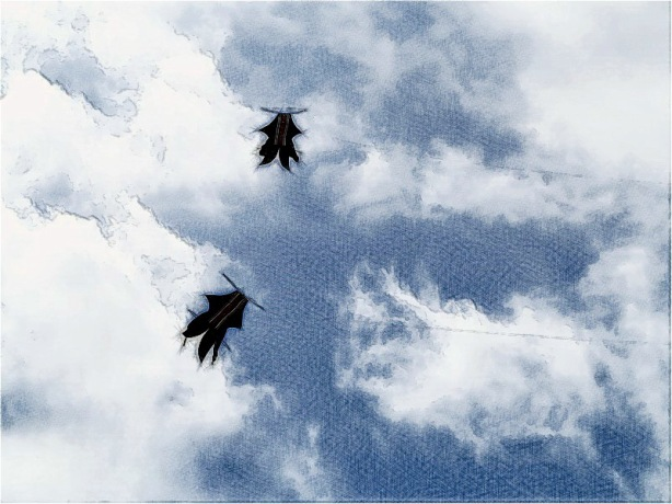 kite_Bali2_art